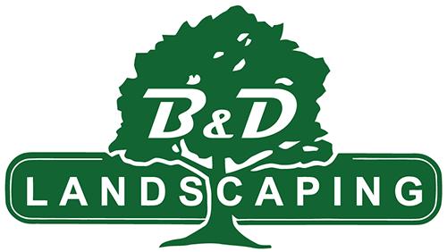 South Shores Premier Landscaping Company B D Landscaping